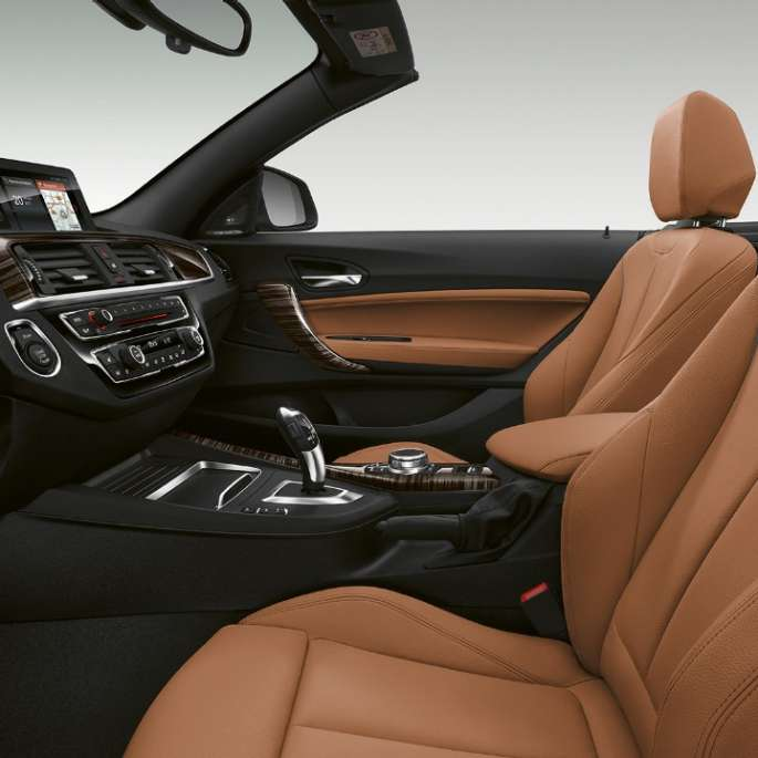 BMW 2 Series Convertible, Model Luxury Line interior